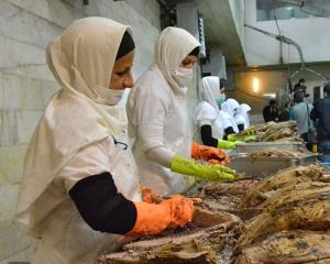 مرحله آماده سازی کنسرو ماهی